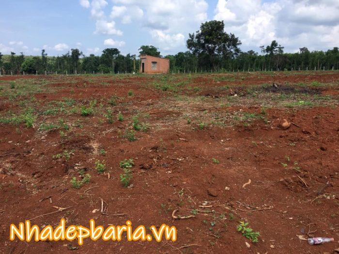 Đất tại xã Đá Bạc , huyện Châu Đức , tỉnh Bà Rịa Vũng Tàu 9700 m2